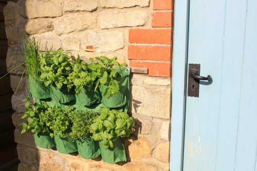 new garden products Haxnicks' Herb Wall Planter laying in the Sun