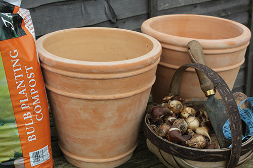 Plant Pots for Planting Bulbs from Haxnicks