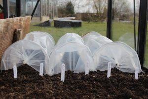 First_garden_jobs_erected_Haxnicks_Seedling_tunnels