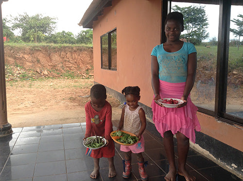 Haxnicks helps Zambian Orphans grow their first Vegetables