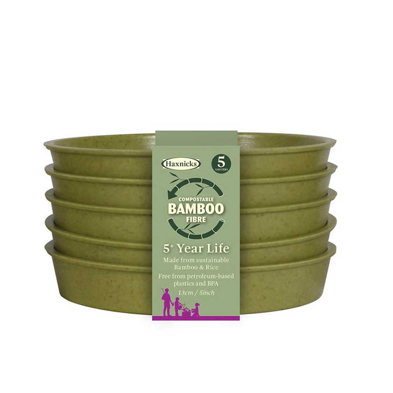 "Haxnicks- Bamboo Pot and Saucer 5"" (5 pack) - sage green saucers packshot"