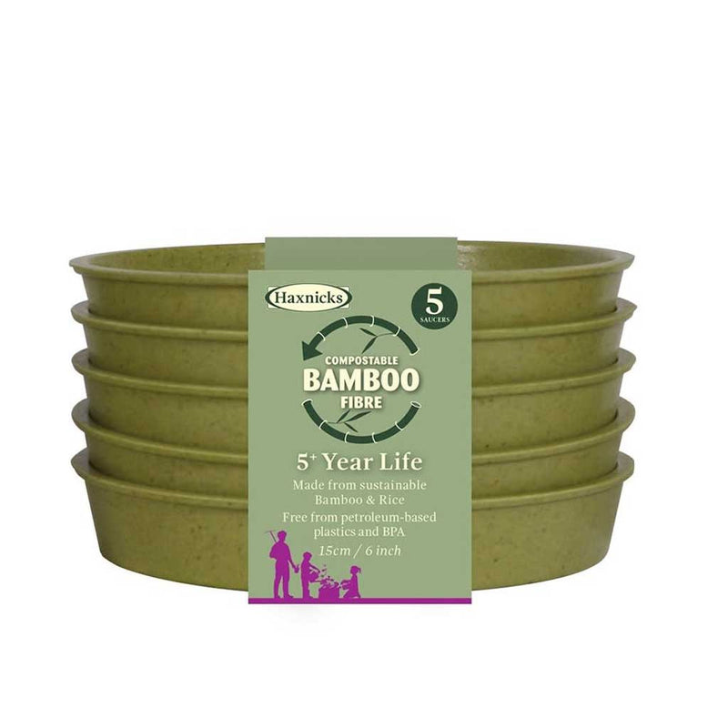 "Haxnicks- Bamboo Pot and Saucer 6"" (5 pack) - sage green saucers packshot"