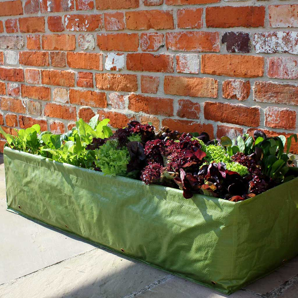 Multi Purpose Growbag Planter - Haxnicks- in use on patio