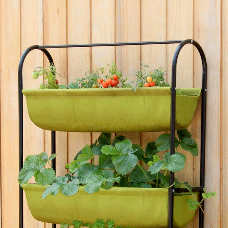 Vigoroot Balcony Garden - Haxnicks