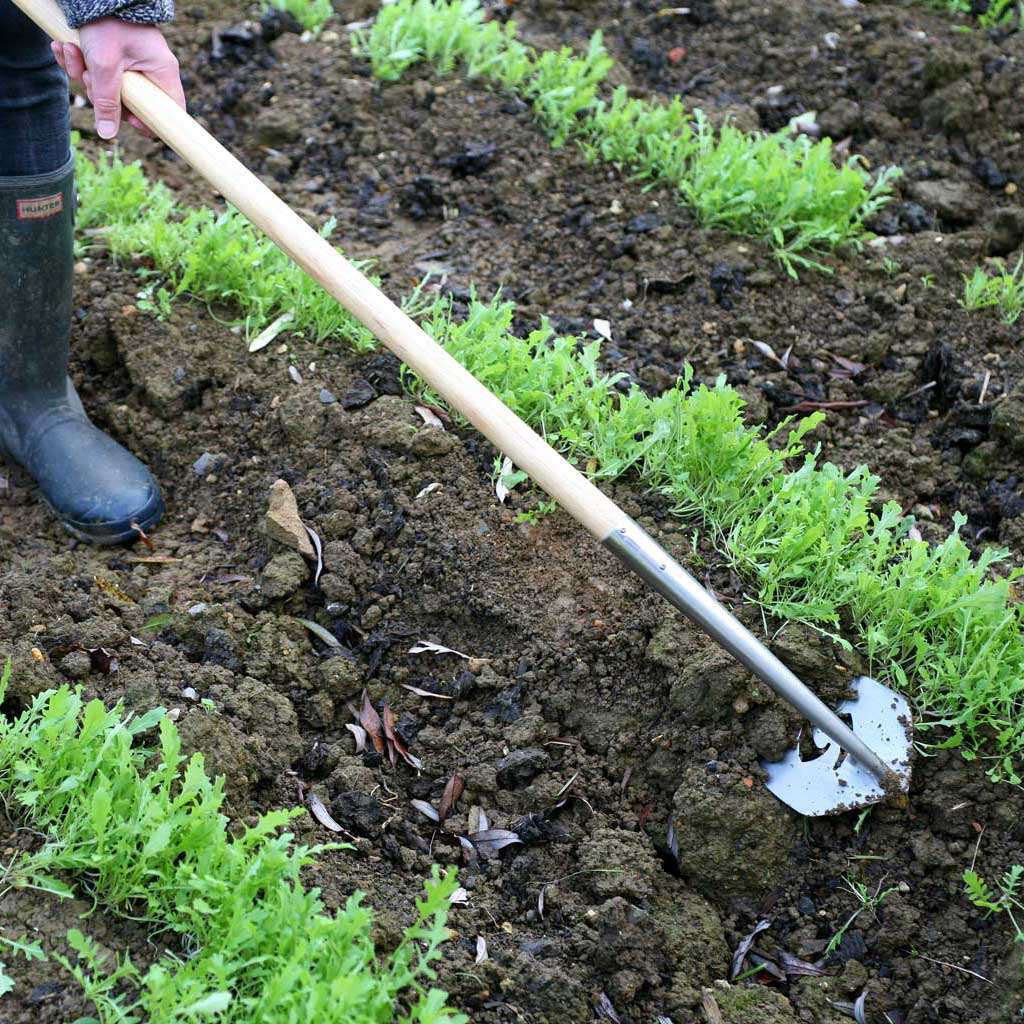 SpeedHoe - Haxnicks- in use on soil