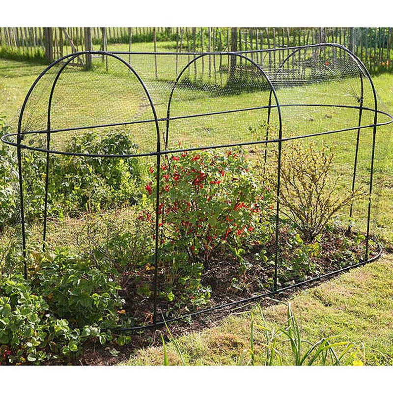 Steel Long Fruit Cage - Haxnicks