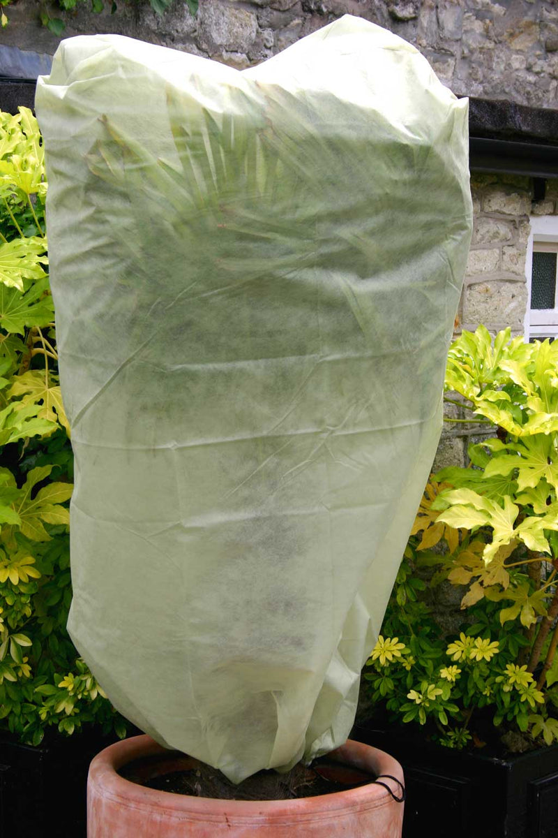 Haxnicks- Easy Fleece Jackets large - in use on tall plant