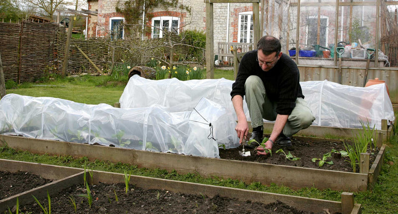 Haxnicks- Easy Poly Tunnel - in use, planting
