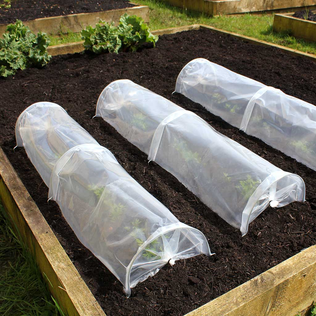 Haxnicks- Easy Seedling Tunnel - 3 in use on raised bed