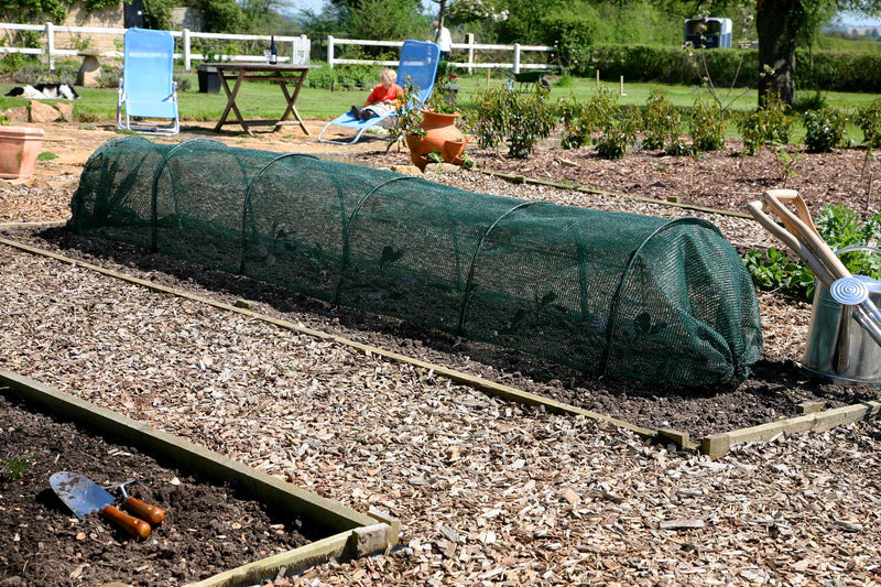 Haxnicks- Giant Easy Net Tunnel - In use on raised bed