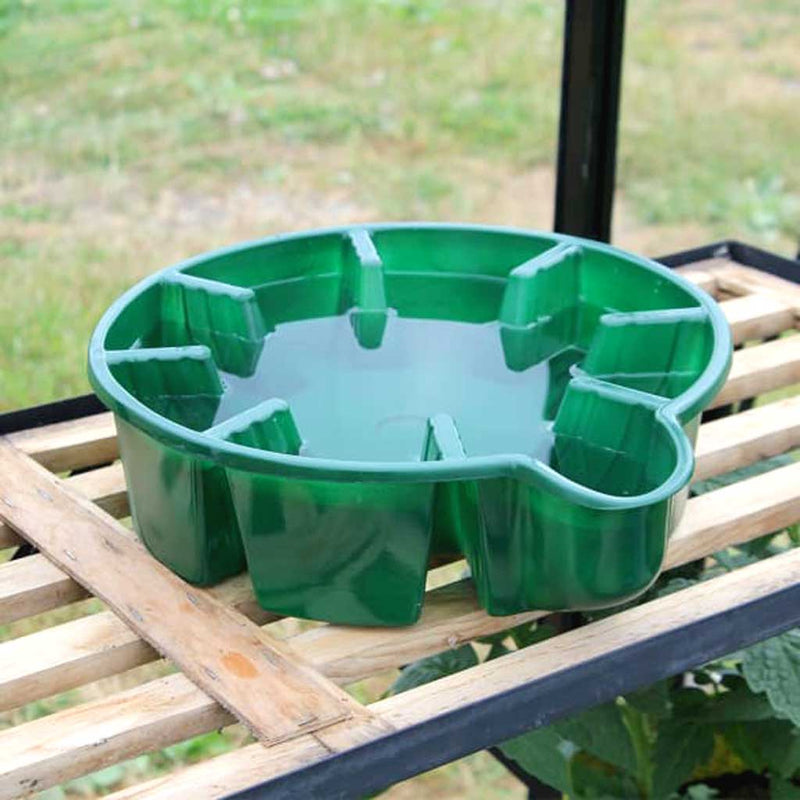 Water Saucer - Haxnicks- in use on shelf