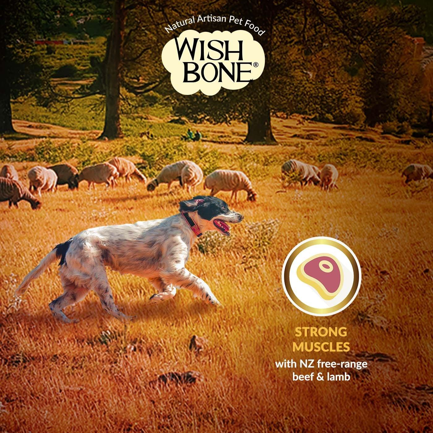 Wishbone Gold (Dog) 20kg/44lbs Strong Muscles
