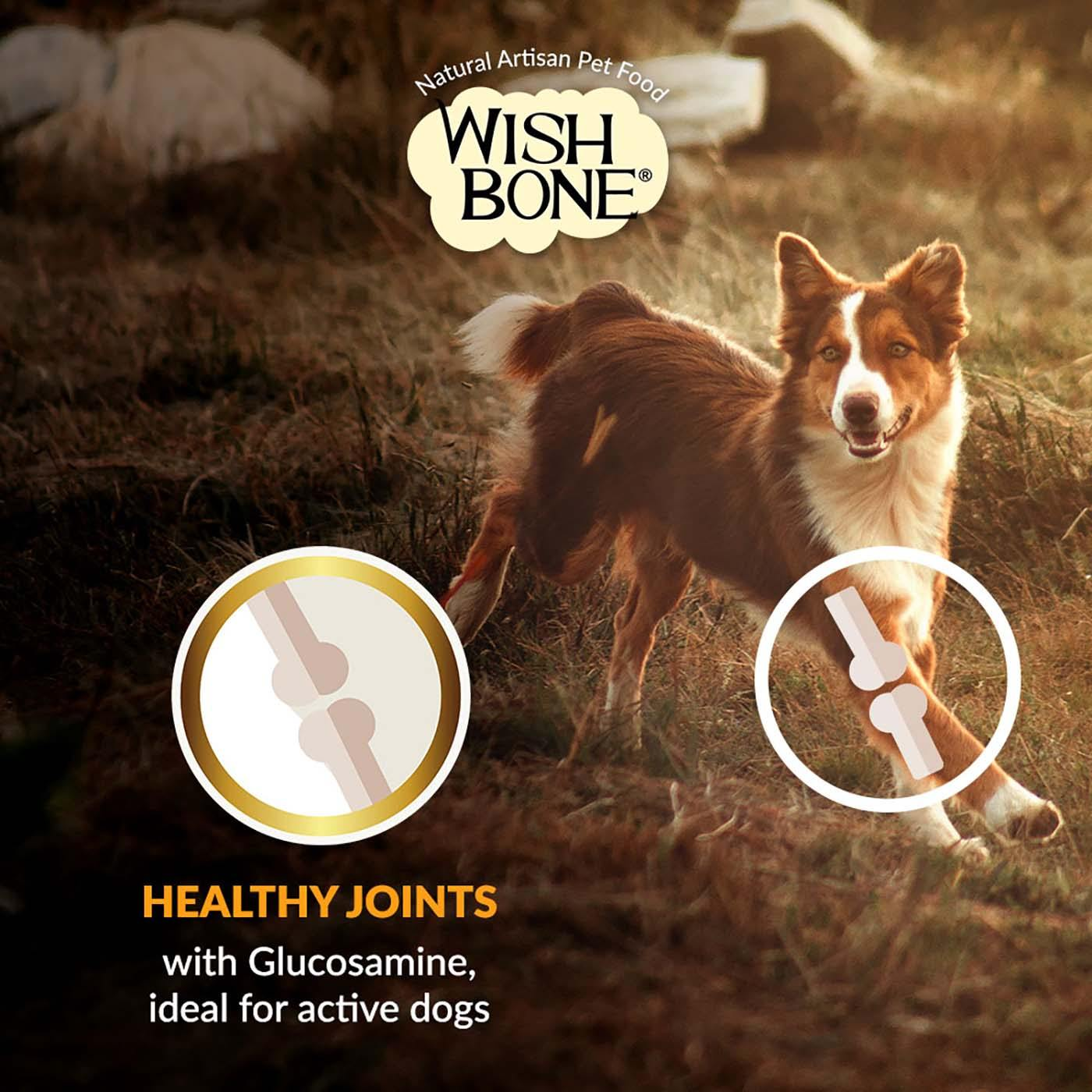 Wishbone Gold (Dog) 20kg/44lbs Healthy Joints