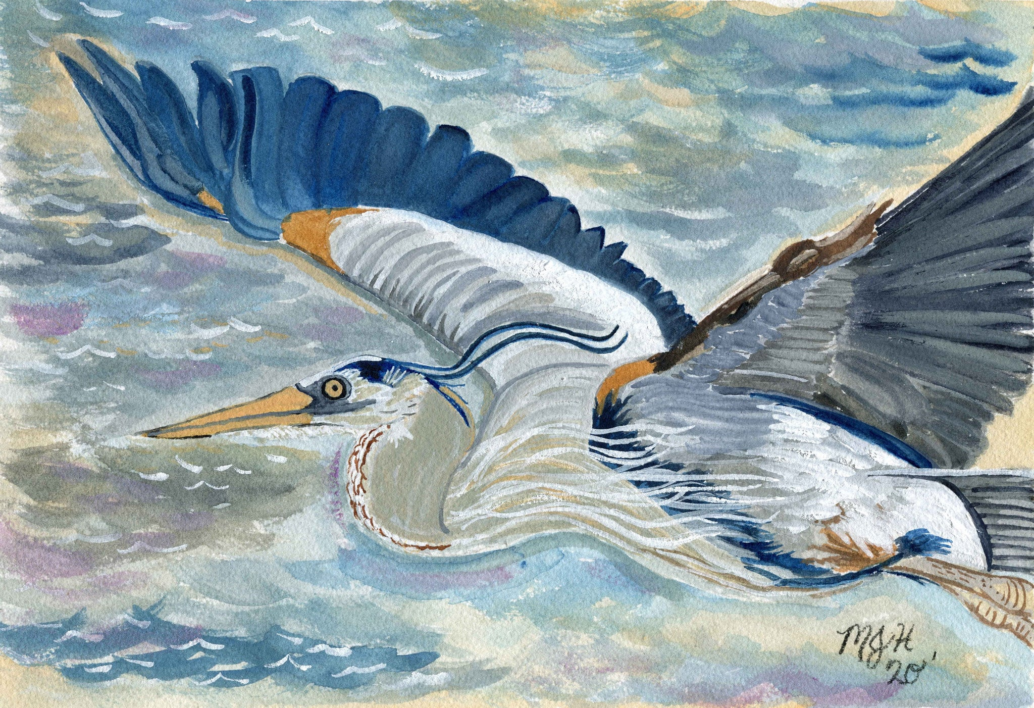 Flying Blue Heron - Limited Edition Prints
