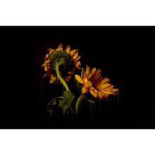 Load image into Gallery viewer, SUNFLOWERS by Ryan Blackwell & Nastassia Winge