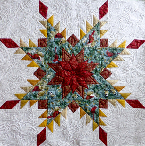 Feathered Star - inner block on Anita's Christmas quilt