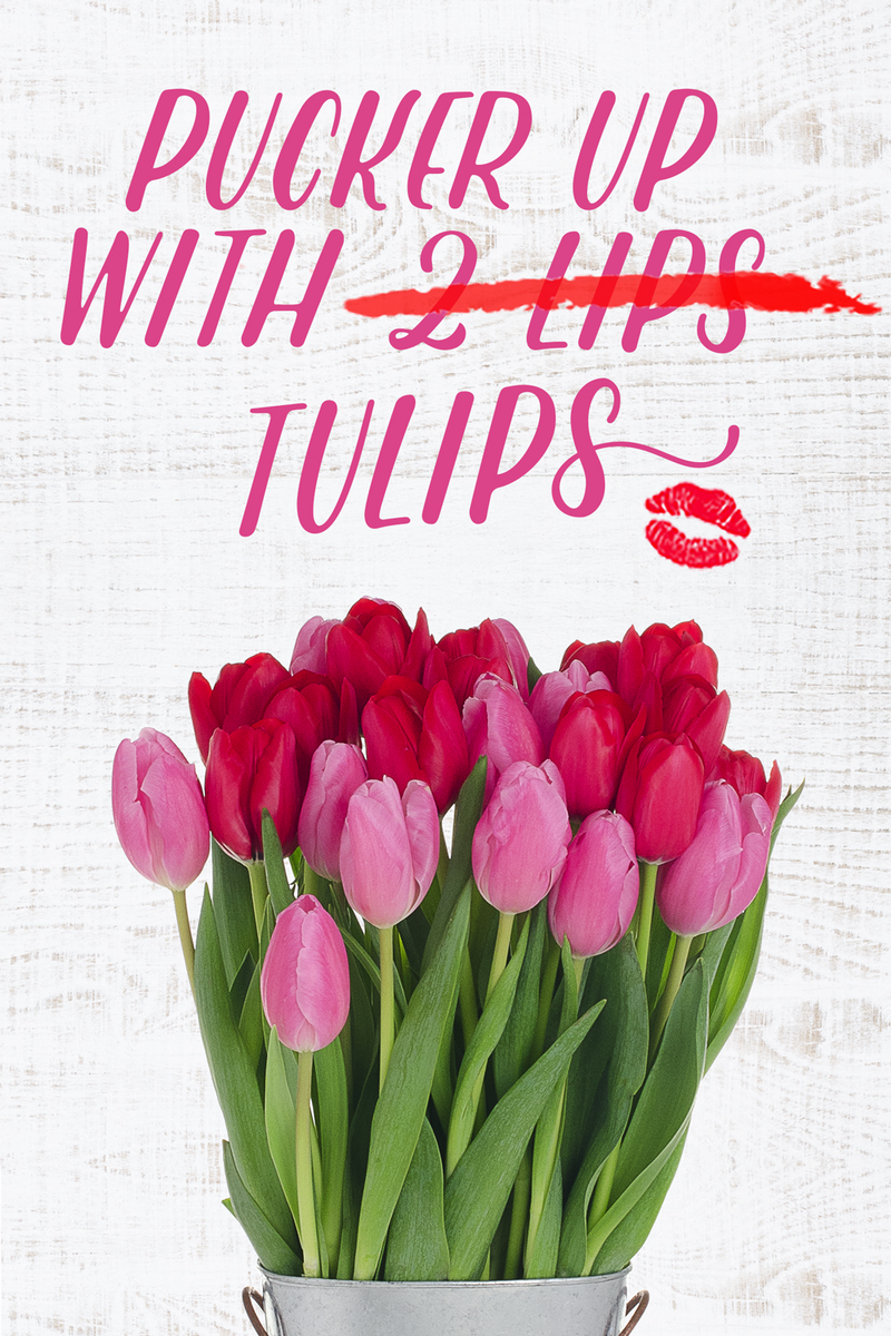Pucker up bouquet. Farm fresh Vibrant red and pink tulips. perfect for valentines day and mother day