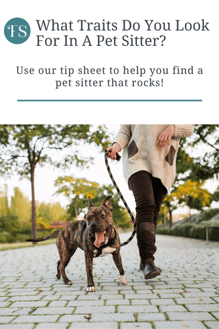 What traits to look for to find a pet sitter that rocks - we share our tips with you!