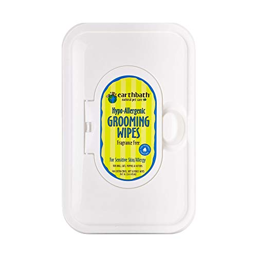 Earthbath All Natural Grooming Wipes (1ct)