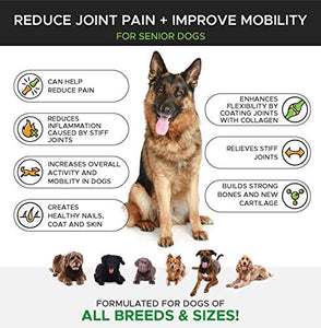 PetHonesty Senior Hemp Mobility Dog Supplement