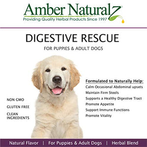 Amber Naturalz Paxxin Digestive Support Supplement