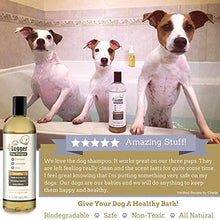 Load image into Gallery viewer, 4-Legger Certified Organic Oatmeal Dog Shampoo