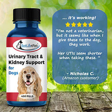 Load image into Gallery viewer, BestLife4Pets Dog UTI Bladder Support Supplement