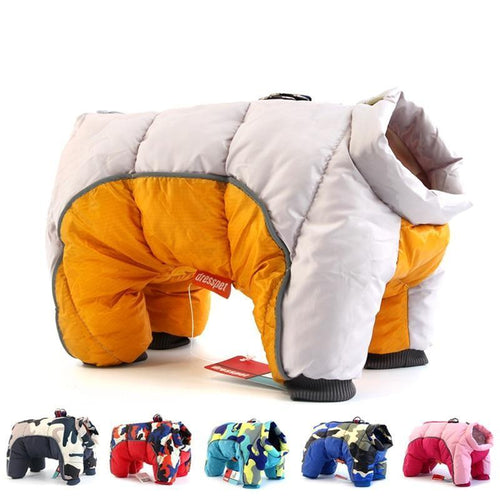 Winter Jacket for Dogs.