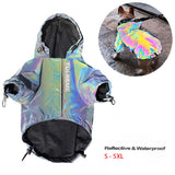 dog neon raincoat