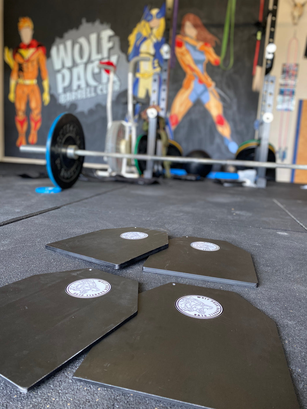 2 x 2.5kg Weight Plates