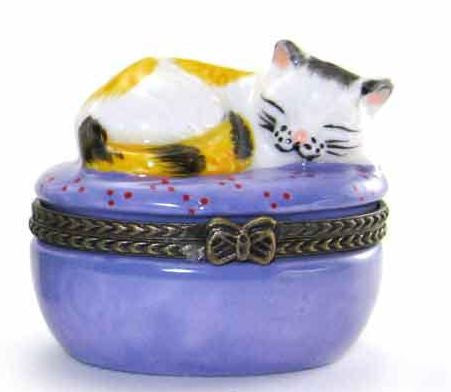 Cat Napping Ceramic Box