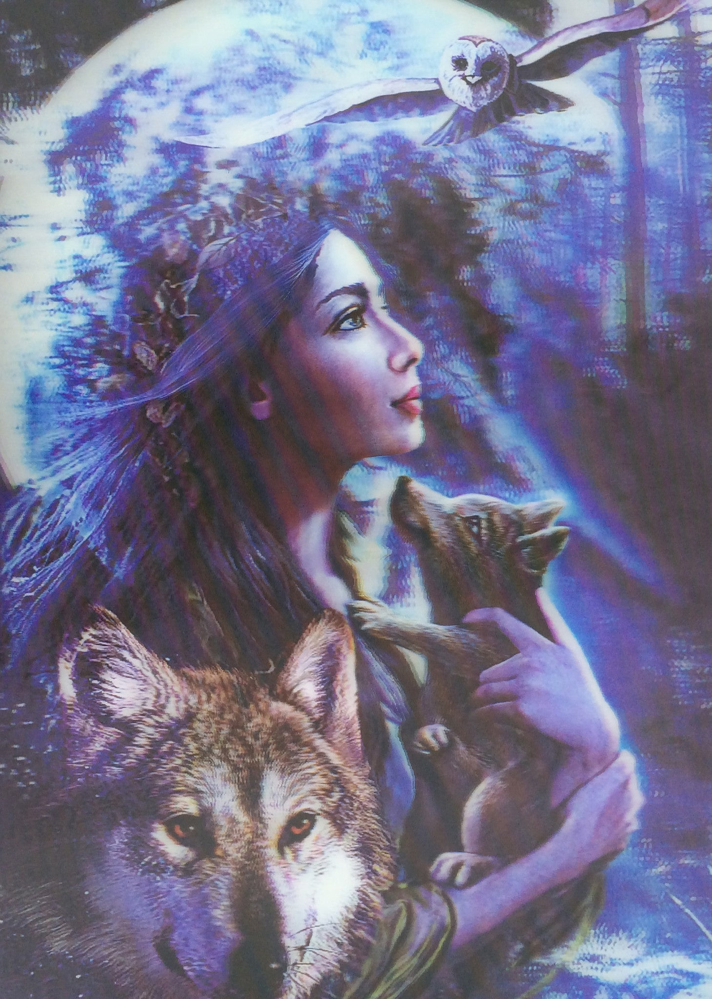 w wolf girl owl 3d picture 3dddpictures com