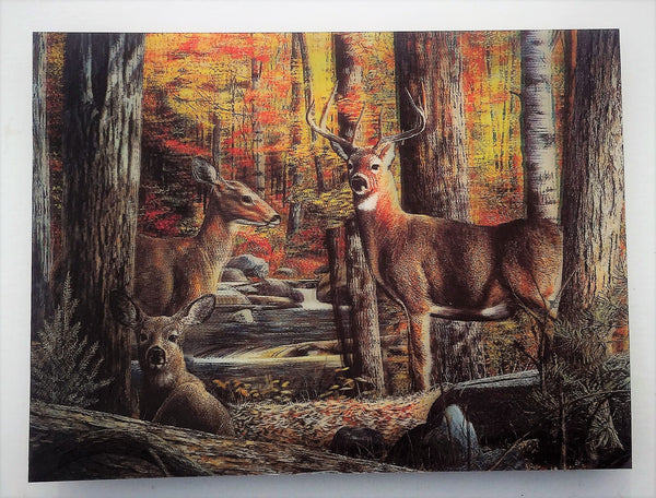 D 4 Deer Family 2 Fall Scene 3d Picture 3dddpictures Com