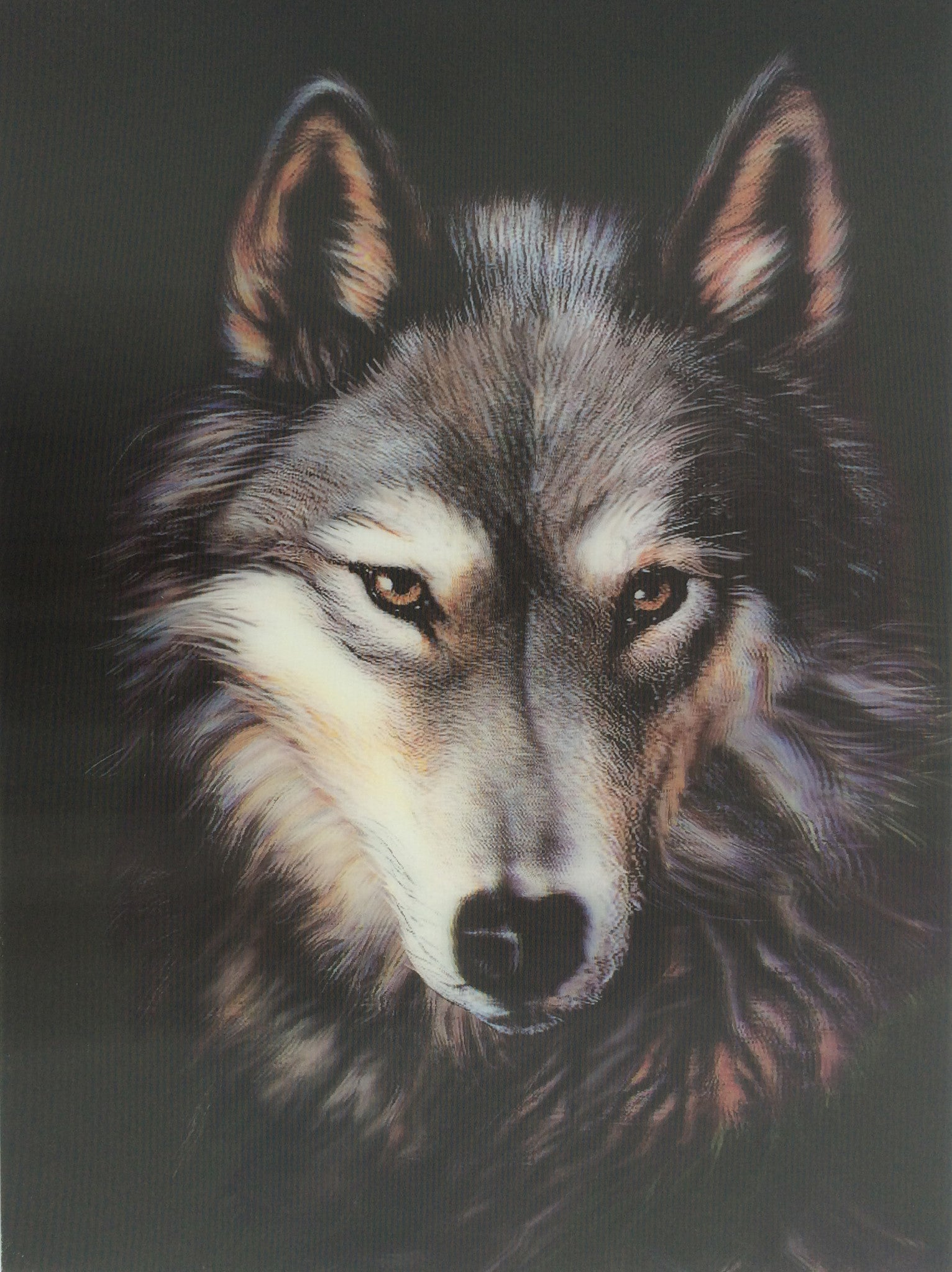 W 8 Wolf Faces And Moon 3d Picture 3dddpictures Com