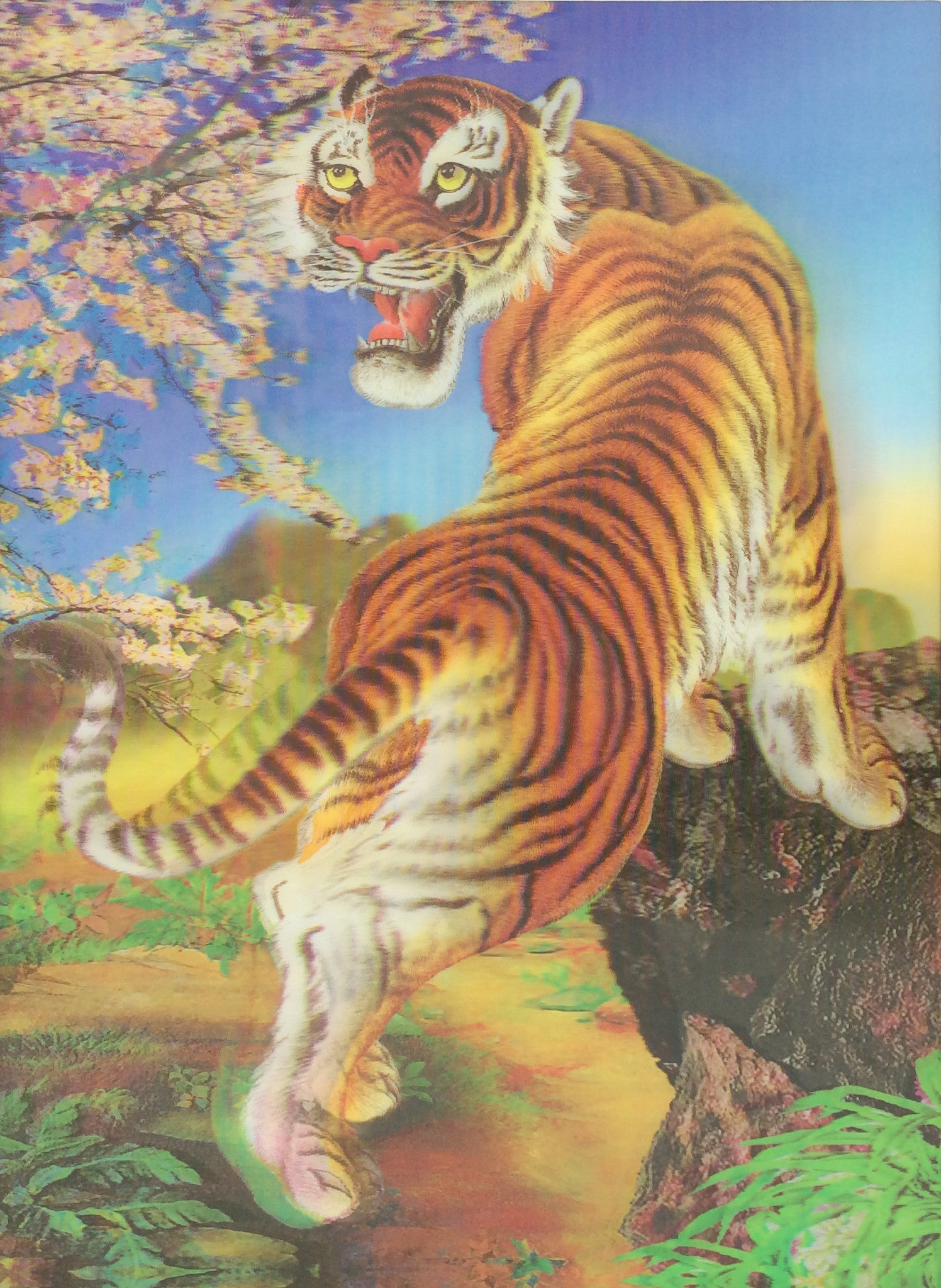 tigers lions leopards 3d picturesfree shipping! | 3dddpictures
