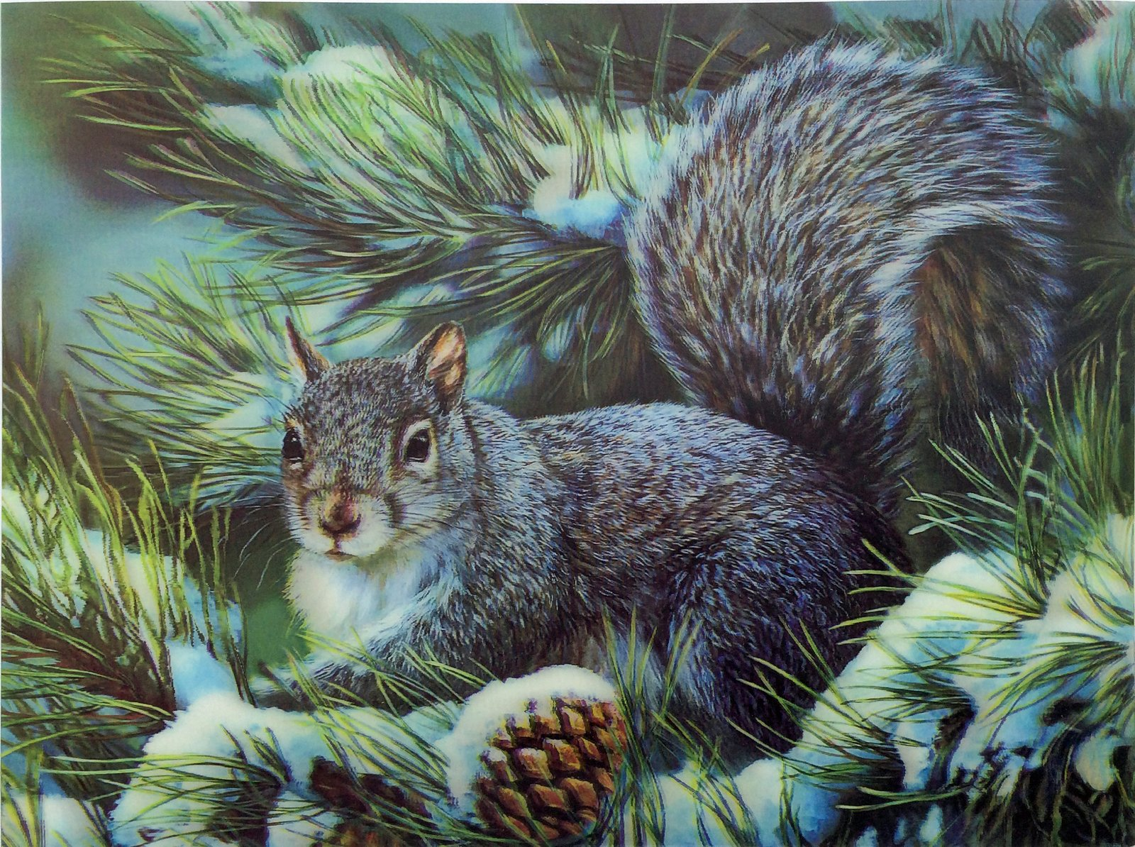 squirrel 3d picture free shipping