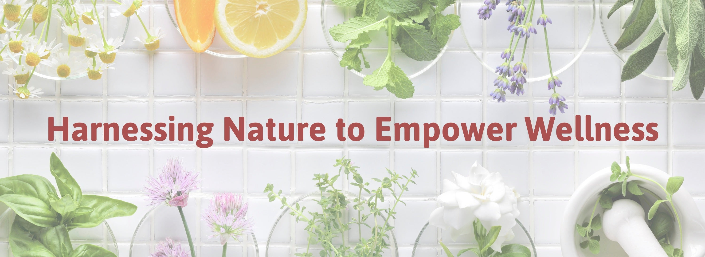 Harnessing Nature to Empower Wellness