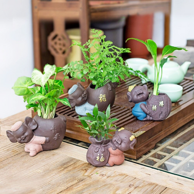 HomeQuill™ LOVE Pigs Bonsai Pots