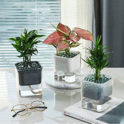 HomeQuill™ Modern Double-Layer Plant Pot