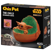 Load image into Gallery viewer, The Child Chia Pet (Star Wars - 'The Mandalorian')