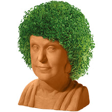 Load image into Gallery viewer, Dorothy ('The Golden Girls') Chia Pet