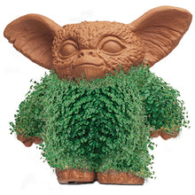 Load image into Gallery viewer, Gizmo ('Gremlins') Chia Pet