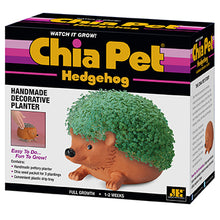Load image into Gallery viewer, Chia Hedgehog