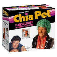 Load image into Gallery viewer, David Hasselhoff Chia Pet