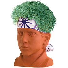 Load image into Gallery viewer, Daniel ('The Karate Kid') Chia Pet