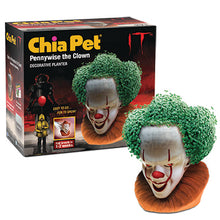 Load image into Gallery viewer, Pennywise ('It') Chia Pet