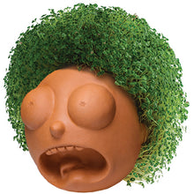 Load image into Gallery viewer, Morty ('Rick & Morty') Chia Pet