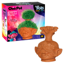 Load image into Gallery viewer, Poppy ('Trolls - World Tour') Chia Pet