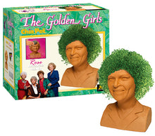 Load image into Gallery viewer, Rose ('The Golden Girls') Chia Pet
