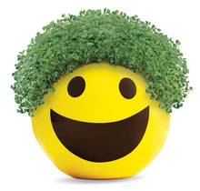 Load image into Gallery viewer, Chia Pet Emoji - Smiley